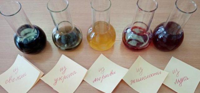 Получение красителей, используя ягоды, овощи различных окрасок